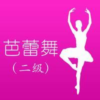 芭蕾舞考级二级