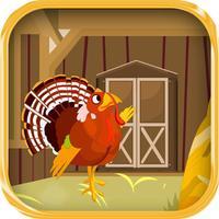 Escape Game-Cranky Turkey