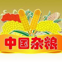 中国杂粮网