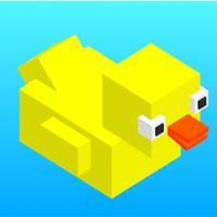 Duck Flip