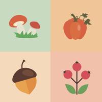 Frutas y Verduras en Otoño
