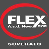 A.s.d. new Flex Gym