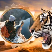 Tiger Photo Frame - Great and Fantastic Frames for your photo
