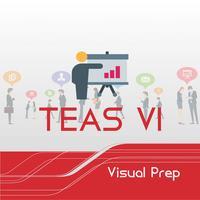 TEAS VI, Visual Prep