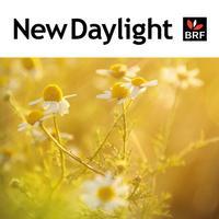 New Daylight