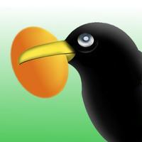 Yumurta Hırsızı Karga