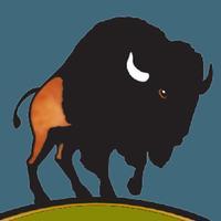 The Bison App