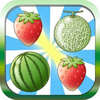 Fruit Pairing