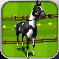 Horse Derby Race Training