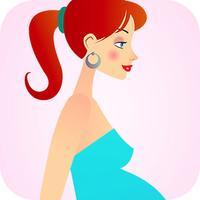 My Pregnancy day by day