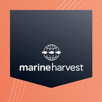 Marine Harvest HSEQ