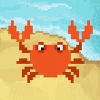 Circle Crab
