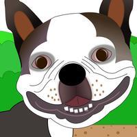 Lennu Run: Cute Dog Running Game