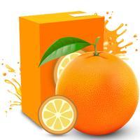Orange to Juice Puzzle