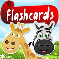 Flashcard Foreign Language