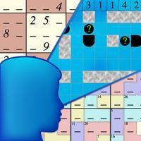 Not Just Sudoku
