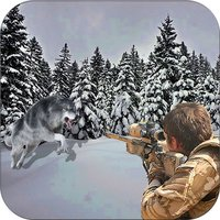 Wild Animal Hunting Wolf Shoot