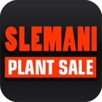 Slemani Plant Sale