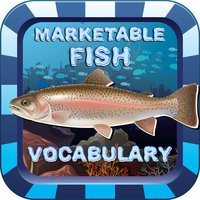 Marketable Fish Flashcards: English Vocabulary Learning Free For Toddlers & Kids!