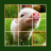 Animal Jigsaw Puzzle - Ultimate swap tile game edition