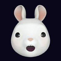 ToonPack - avatar video chat