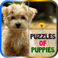 Puzzles of Puppies