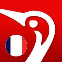 Gyldendal's French Danish Dictionary - Medium