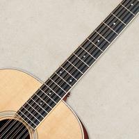 12 String Guitar Tuner