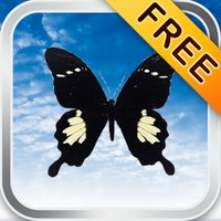 ButterFly® FREE