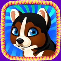 Lovely Puppy Pet:Puzzle games for children