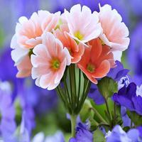 Flower Blossom Stickers