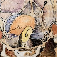 Gil Vernet's Urology Drawings
