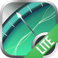 Magnetic Detector LITE