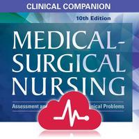 Medical Surgical RN Companion