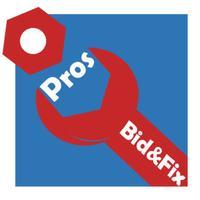 Bid&Fix for Professionals