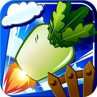 Daikon Rocket
