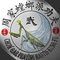 Mantis Kung Fu Drills