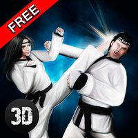 Karate Do Fighting Tiger 3D
