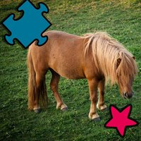 Animated Horse Puzzle For Kids and Babies: Pony Lovers Will Love This Free Educational Kids& Teen Game