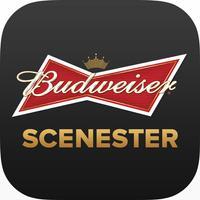 Budweiser Scenester