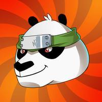 Ninja Panda Master Fighter