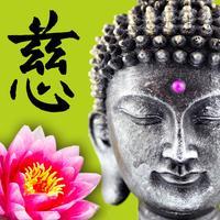 Buddha Orakel
