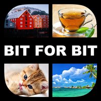 What´s the pic - Bit for bit - på Norsk