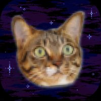 Cats In Space! Galactic Mice