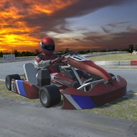 Go Karts Racing 3D - Extreme Go Karts Driving Simulator