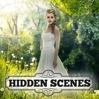 Hidden Scenes - Peaceful Puzzles