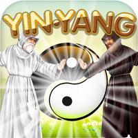 Physics Puzzle Shaolin Mystery of Yin and Yang
