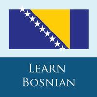 Bosnian 365