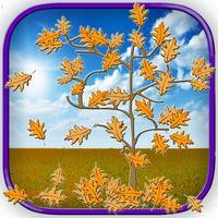 Falling Leaf - Tree Adventure