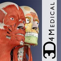 Essential Muscle + Skeleton Anatomy
